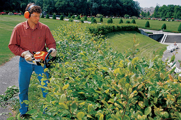 Stihl |  Hedge Trimmers | Homeowner Hedge Trimmers for sale at Columbus, Elmer, Marlboro, Hammonton, Columbia, NJ